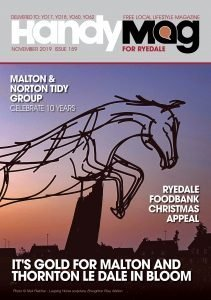 Handy Mag Ryedale Nov19