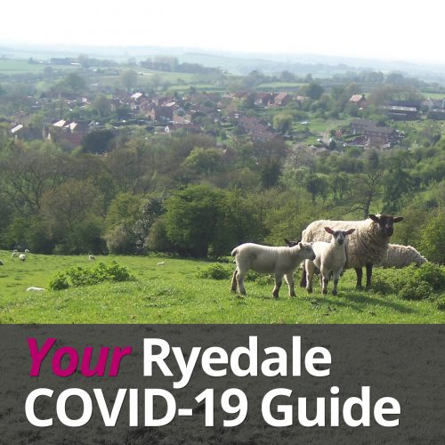 Your_Ryedale_COVID-19_Guide_Button